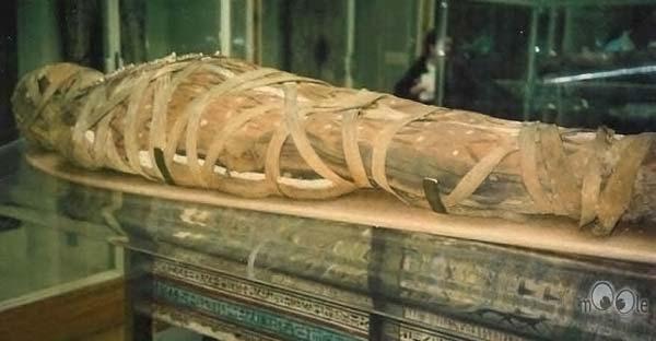 Мумия Тутанхамон