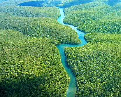 Самая полноводная река в мире – Амазонка