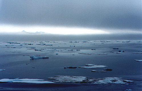 Самый холодный океан в мире – Северный Ледовитый